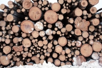 Logs from Finland